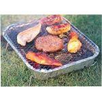 Barbecue-a-carbone-usa-e-getta